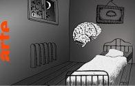 Lasst mich schlafen! Eine kleine Reise ins Land der Träume | Doku | ARTE