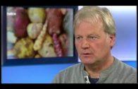 Kartoffelvielfalt – Von Pommes bis Papier | Wie geht das? | NDR