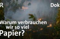 Konsum, Verbrauch, Umwelt: Brandgefährlich – unsere Papierverschwendung | DokThema | Doku | BR