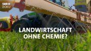 Landwirtschaft ohne Chemie? Bauern suchen neue Wege | SWR Doku