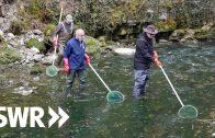 Leben am Neckar – Fischer, Flößer und Industrie-Pioniere    SWR Geschichte & Entdeckungen