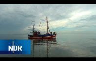 Lebenswertes Spiekeroog | die nordstory | NDR