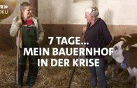 Mein Bauernhof in der Krise | 7 Tage… | SWR Doku