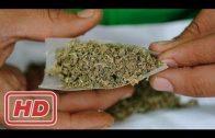 Marihuana-Konsum in Deutschland – Die neue Lieblingsdroge – Doku 2017