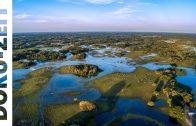 Naturparadiese in Lateinamerika – Das Pantanal Doku 2012