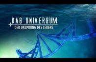 Doku Universum | Der Ursprung des Lebens
