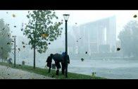 Naturkatastrophen in Deutschland – Wenn das Wetter verrücktspielt – Doku 2019