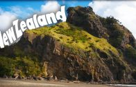 Neuseeland Work and Travel: Hilfreiche Tipps und Erfahrungen