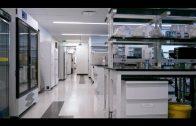 The end of antibiotics? | Panorama – die Reporter | NDR