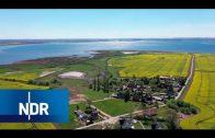 Ostsee-Juwel Poel: Die Insel der Einheimischen | die nordstory | NDR Doku