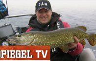 Petri Heil! – Volkssport Angeln (SPIEGEL TV Doku)