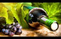 Planet Wissen – Faszination Wein