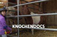 Reiten mit einem Bein | Die Knochendocs | SWR Doku