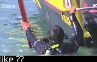 Sharkville Die Bucht der weißen Haie Dokumentation Deutsch Neue doku 2013