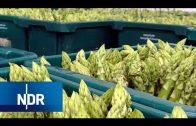 Spargel – Das Gemüse für Genießer | Wie geht das? | NDR