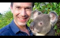 Steffens entdeckt – Australien 2 Eldorado der Natur