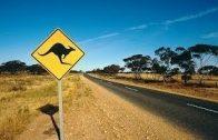 Steffens entdeckt: Australien – Eldorado der Natur [Doku Deutsch]