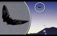 UFO 👽 WIR SIND NICHT ALLEINE   UFOs die BEWEISE dass sie existieren!!  DOKU deutsch 2017 HD