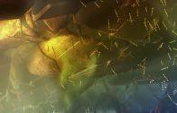 UNIVERSUM DOKU 2019 HD über Weltraum Galaxie und Milchstrassen