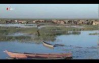 Verbrechen im Namen des Klimas – Climate Crimes – Doku deutsch Dokumentation