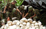 Wie der Drogenhandel Afrika regiert