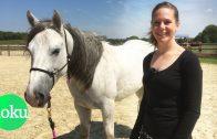 Wilde Mustangs in Deutschland – Wie zähme ich ein Pferd?   WDR Doku