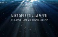 Wissenschaft   Umwelt und Natur Mikroplastik im Meer   Unsichtbar, aber auch ungefährlich  09650