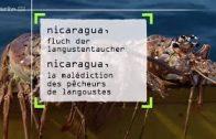 360° GEO REPORTAGE Nicaragua Fluch der Langustentaucher ARTE Doku