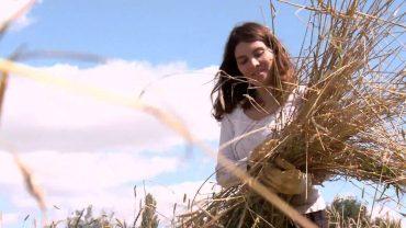 Yourope: Alternative Landwirtschaft – Kann sie Europa besser ernähren